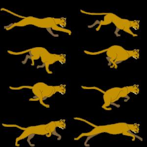 ספרייט חתול רץ